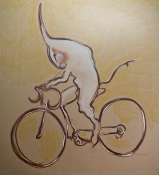 dominis-bici